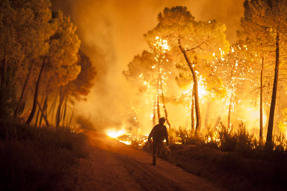 A firefighter walks past trees on fire during a wildfire in Tabuyo del Monte near Leon, Spain, on Tuesday August 21, 2012. Some 500 soldiers have been deployed to help battle a wildfire authorities believe was started intentionally and which has burned 80 sq. kilometers (30. sq. miles) in northern Spain. (AP Photo/Pedro Armestre)